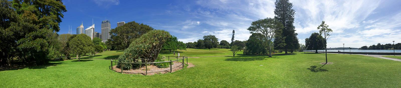 sydney-royal-botanic-gardens3