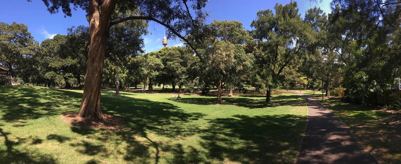 sydney-royal-botanic-gardens5