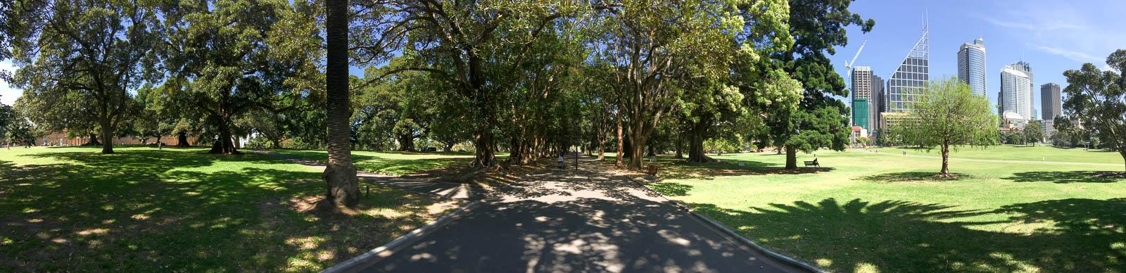 sydney-royal-botanic-gardens6