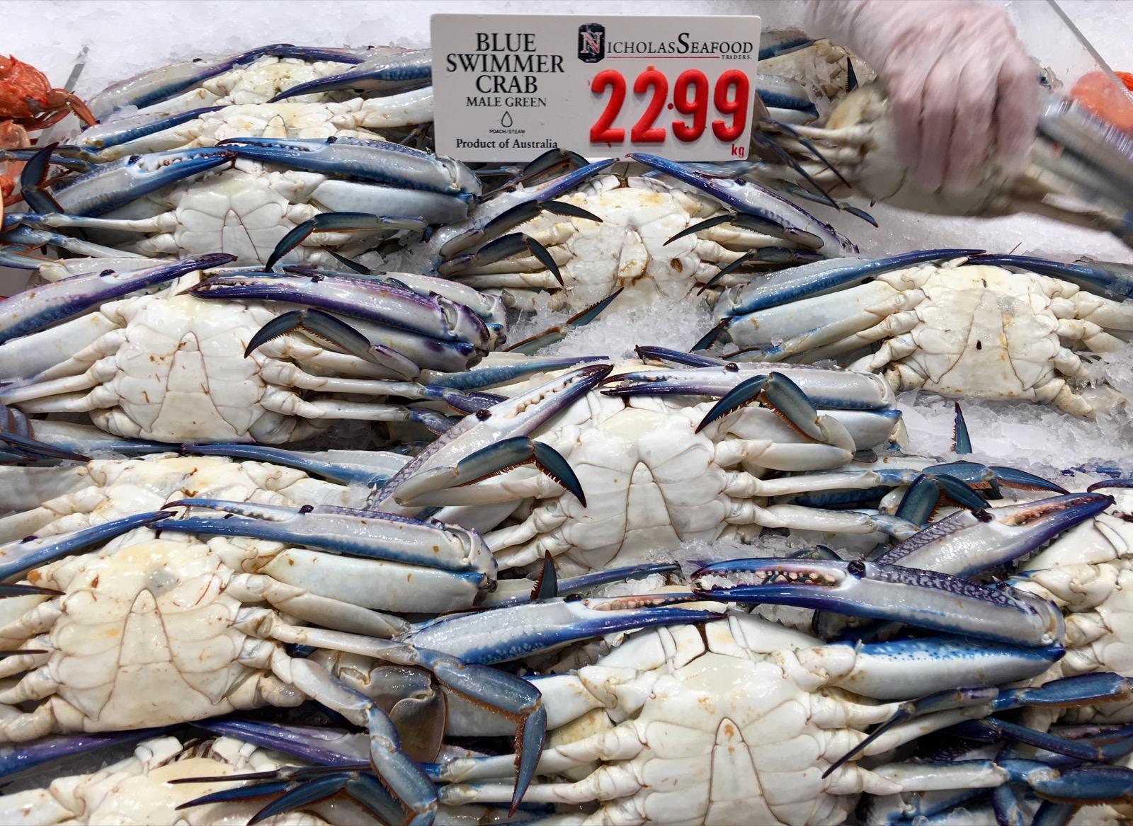 sydney-fish-market_blue-swimmer-crab