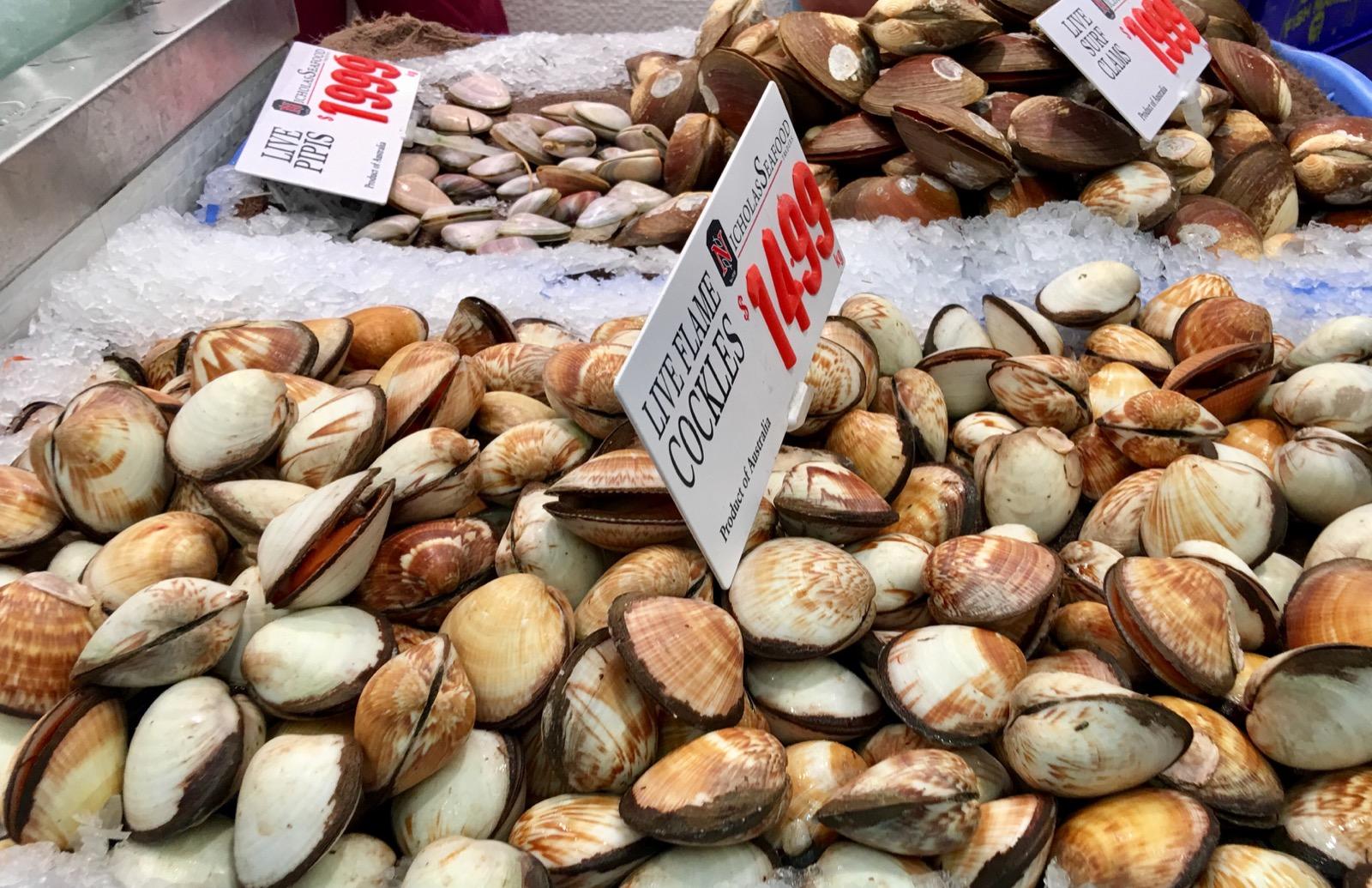sydney-fish-market_cockles