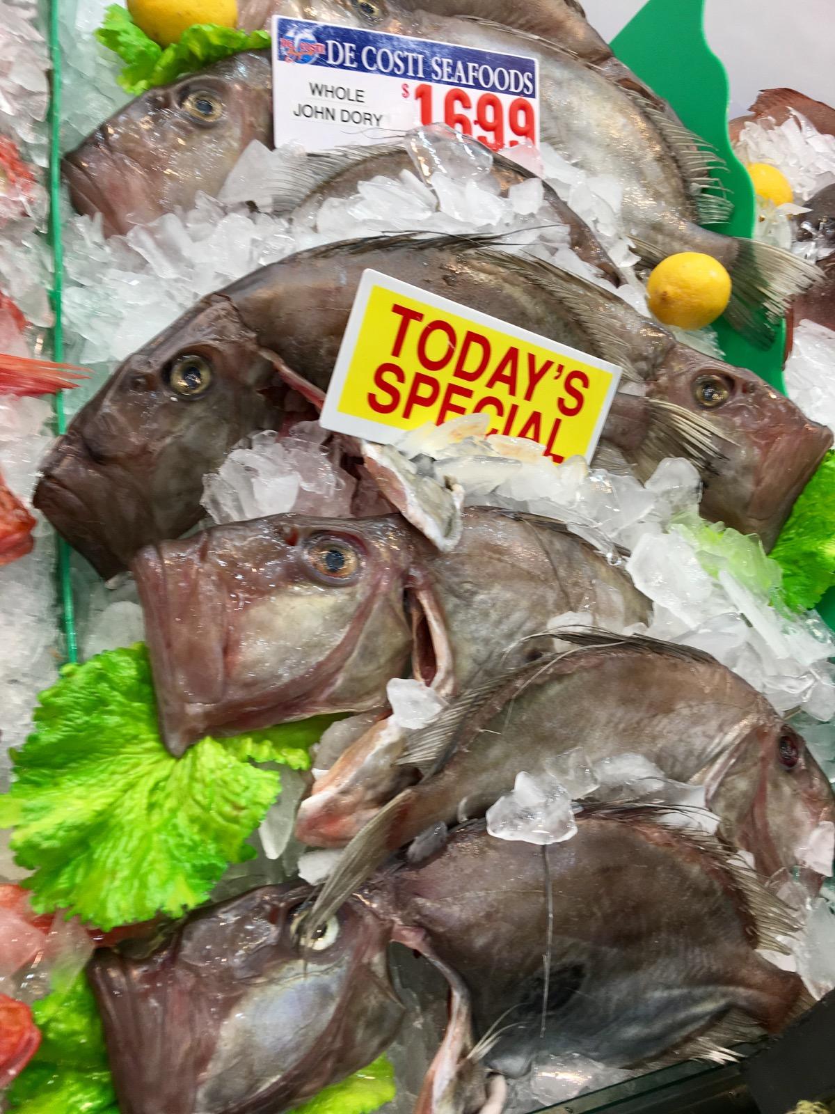 sydney-fish-market_john-dory