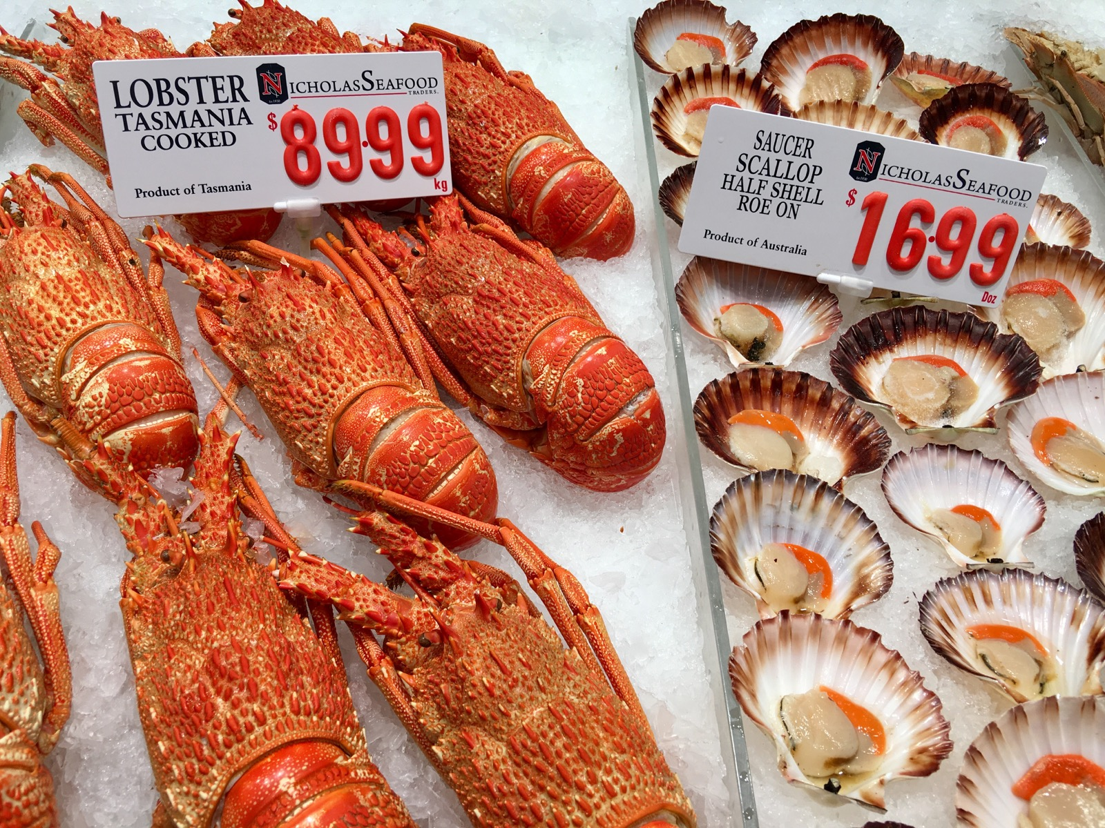 sydney-fish-market_lobsters-and-scallops