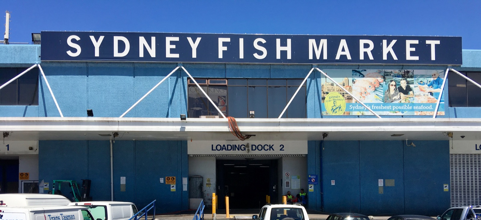 sydney-fish-market_title